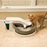 Simply clean litter box